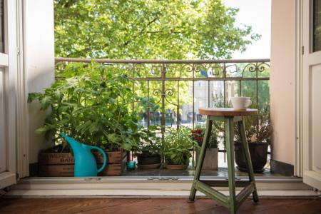 IDG_Blog_Deck_Garden